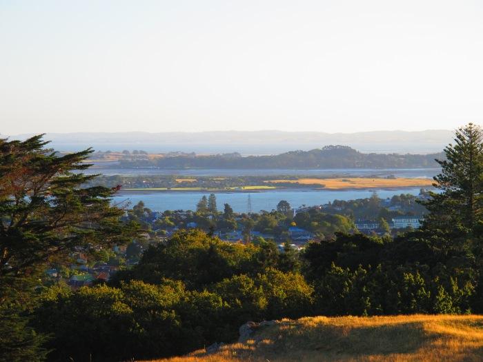 Puketutu Island and Ambury Regional Park from Cornwall Park