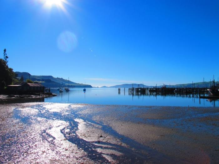 Past Port Otago, Dunedin