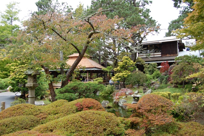 DSC_0135 Japenese Tea Garden
